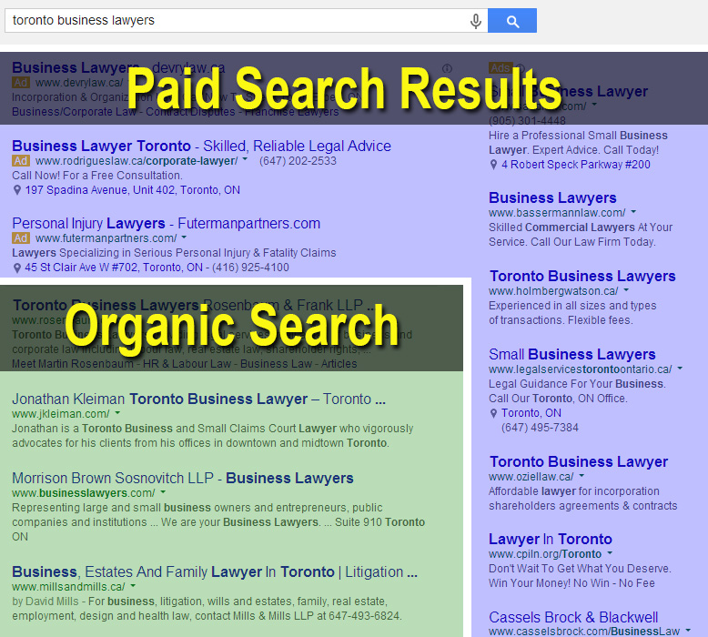 Organic and paid search results