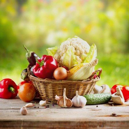 natural-food-shop-portfolio
